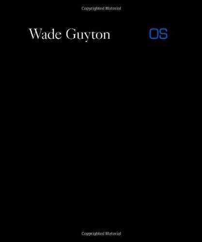 Wade Guyton OS (Whitney Museum of American Art)
