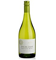 Limari Valley Sauvignon Blanc 2011 - Case of 6