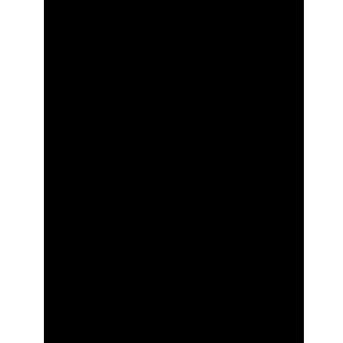Itoya BP-11-14 Art Profolio Black Paper Refill 11x14in. Black