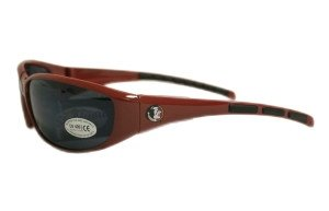 Florida State Seminoles Sunglasses by Hall of Fame Memorabilia