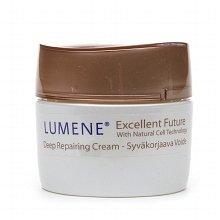 Lumene Excellent Future Deep Repairing Cream 1.7 fl oz (Quantity of 2) annemarie borlind zz sensitive day cream 1 7 fl oz pack of 3
