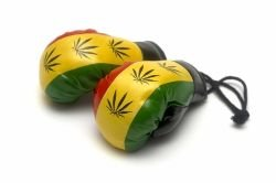 Mini Boxing Gloves - Marijuana - 1