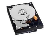 Western Digital 3.5 inch AV-GP 1TB SATA 3 GB/s 64MB Internal Hard Drive