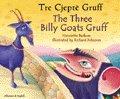 The Three Billy Goats Gruff in Spanish & English (Folk Tales)