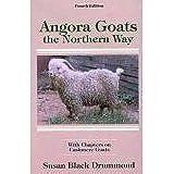 Angora Goats the Northern Way