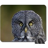Owl Face Mouse Pad, Mousepad (Birds Mouse Pad)