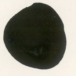 black-ready-mix-poster-paint-600ml-bottle