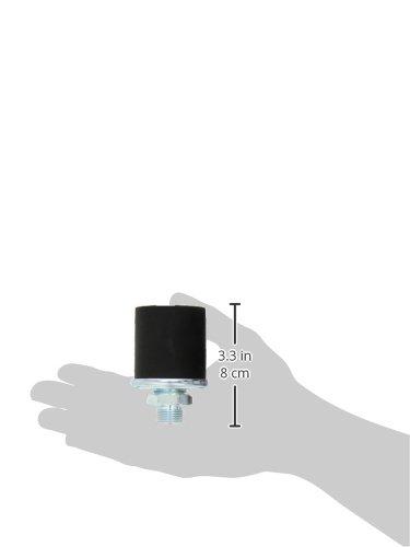 FAE 14090 Sensor, Öldruck