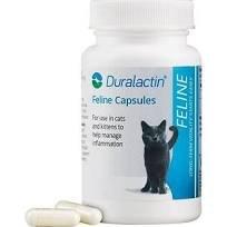duralactin feline 200 mg 60 tabs 764464038299. Black Bedroom Furniture Sets. Home Design Ideas