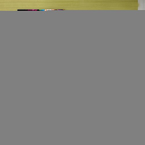 Camouflage donna pittura decorativa pittura frameless pittura ad olio di due Soggiorno Sala da pranzo Studio corridoi , 50*50*2