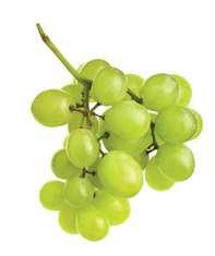 Green Seedless Grapes Fresh Produce Fruit Per Pound by wd1