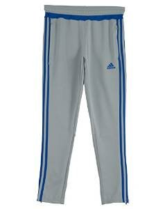 adidas Performance Boys Tiro Pants, Clear Onix, Large