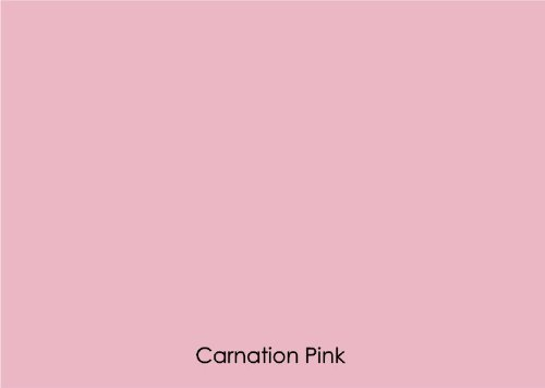 "12"" X 10 Ft Roll Of Matte Oracal 631 Carnation Pink Repositionable Adhesive-Backed Vinyl For Craft Cutters, Punches And Vinyl Sign Cutters By Vinylxsticker front-640889"