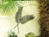 Gardman Palm Leaf Wall Art by Gardman Limited