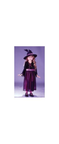 Storybook Witch Velvet Toddler Costume