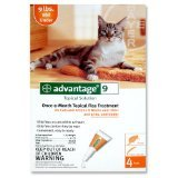 F.C.E. INC ADVANTAGE CAT ORANGE 10-10# 4PK