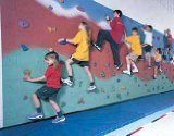 Do-It-Yourself Rock Climbing System -Plywood Walls - Without Paint