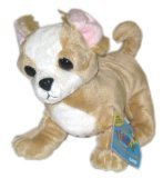 Webkinz Chihuahua