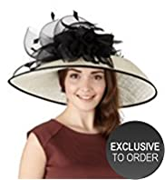 Faux Feather & Mesh Large Bow Hat