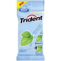 Trident Mint Bliss Sugar Free Gum, 18 Sticks (Case of 20) (012546001953)