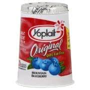 Amazon.com : YOPLAIT YOGURT 99% FAT FREE BLUEBERRY ...