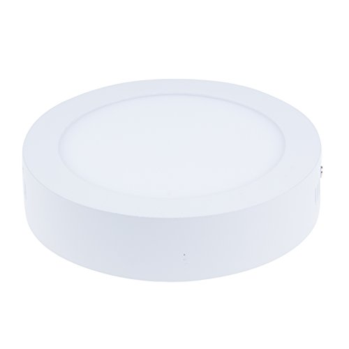Bloomwin-2Pcs/Lot 12W Panel Led Round Suspended Smd Light Cool White Surface Mounted Ceiling Panel Downlight