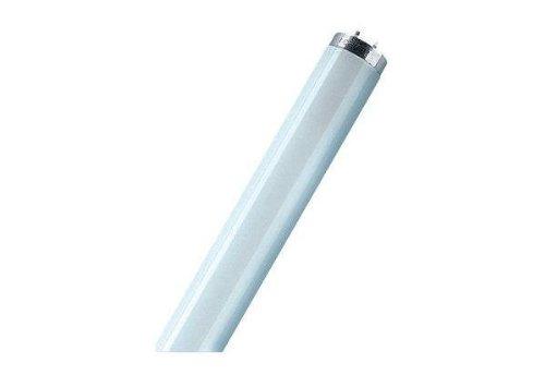 osram-lampe-fluorescente-lumilux-t8-18-watt-840