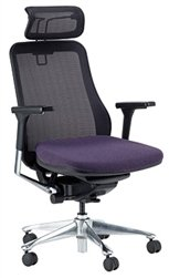 Eurotech Symbian Mesh Back Office Chair by Raynor