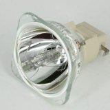 GLAMPS BL-FP200F Original Bare bulb / lamp For OPTOMA DX612 EP628 EP723 EP728 EP728i EW1610 EW628 EX628 TS723 TX1610 TX728 Projector