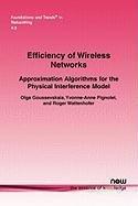 Efficiency of Wireless Networks