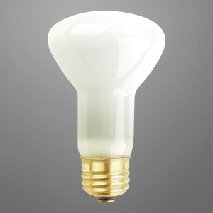 75 Watts R20 Flood 10 000 Hour Light Bulb Long Life Reflector Bulb Medium Base Incandescent R20