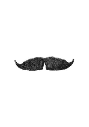 HMS Emerald City Guard Handle Bar Mustache