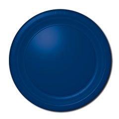 "10 1/2"" Blue Paper Plates 20 per pack"