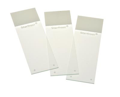 Starfrost Adhesive Microscope Slides, Straight Edge, 144/Gross, 1 Gross, White