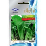 bok-choy-pak-choi-chinese-cabbage-seeds-1-package-from-chai-tai-thailand