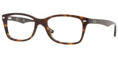 Ray-Ban Glasses 5228 Tortoise 2012 53