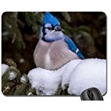 Blue jay Mouse Pad, Mousepad (Birds Mouse Pad)