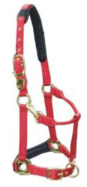 Halfter, Deluxe Nylon-Halfter, Pony,rot
