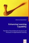 Enhancing Learning Capability: The Role of Social Network Structures and Processes on Organizational Learning