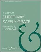 Sheep May Safely Graze (orch. Cailliet) PDF