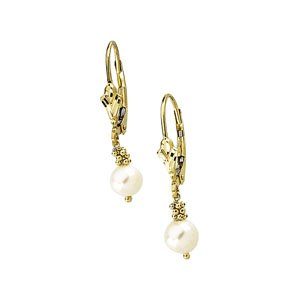 14k Yellow Gold Lever Back Earring White Pearl 5.5 - 6mm - JewelryWeb