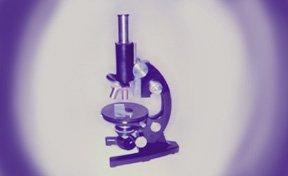 Cells Dvd By Ann R. Edson M.Ed.