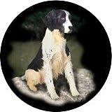 English Springer Spaniel Black & White Welsh Slate Coaster