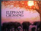 Elephant Crossing