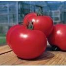 Arkansas Traveler Tomato Seeds 40 Seeds
