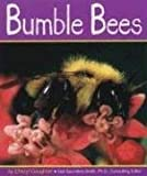 img - for Bumble Bees (Insects) book / textbook / text book