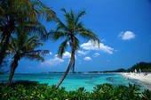 bahamas-and-florida-vacation-package