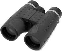 Swift Ultra 10X42 Roof, Waterproof, Gray Binoculars 930G
