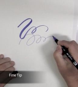 Dual brush fine tip