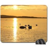 glad-to-be-with-you-mouse-pad-mousepad-birds-mouse-pad